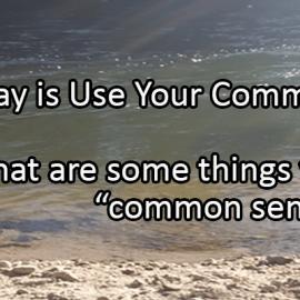 Writing Prompt for November 4: Common Sense