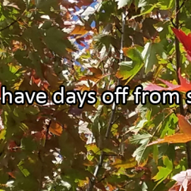 Writing Prompt for November 25: Days Off