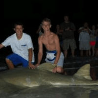7/27/13, Fort Myers Fishing Report: Huge Sawfish ~ Sanibel & Captiva