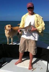 Charlie, Blacktip Shark, 11-11-13, Fort Myers Fishing Report & Fort Myers Fishing Charters.