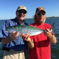 Fort Myers Fishing Report, 11/3/14: False Albacore, Little Tunny ~ #FortMyers
