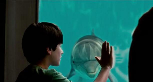dolphin-tale movie