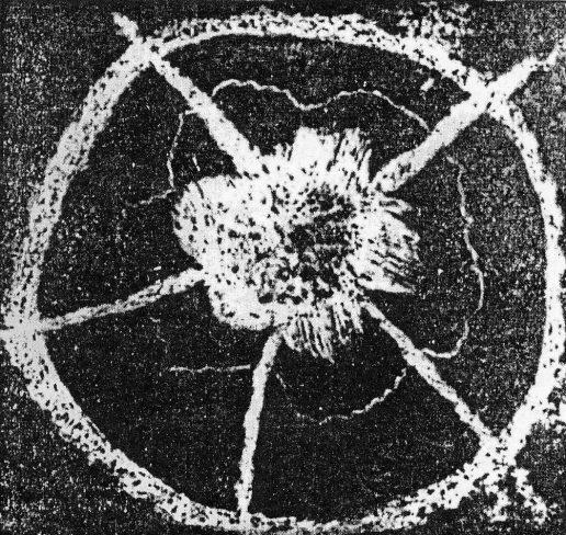Atomo Magnetico = Monopolo Magnetico = Particella Magnetica