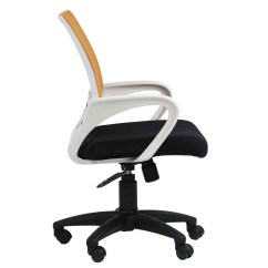 Best Back Support For Office Chair Singapore Swing Canopy Aof Jean Lumbar Low Furniture