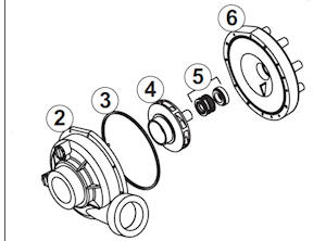 Jacuzzi J-300 Series 48 Frame Pump Parts : Forty Winks