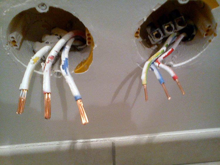 Branchement Electrique Quelle Prise Pour Brancher Plaque De Cuisson Induction