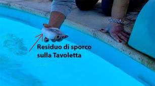 tavoletta_sporca