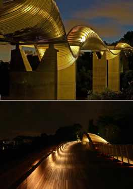 most-amazing-bridge-3rd-Henderson-Waves-Singapore-Most-Beautiful-Pedestrian-Bridge