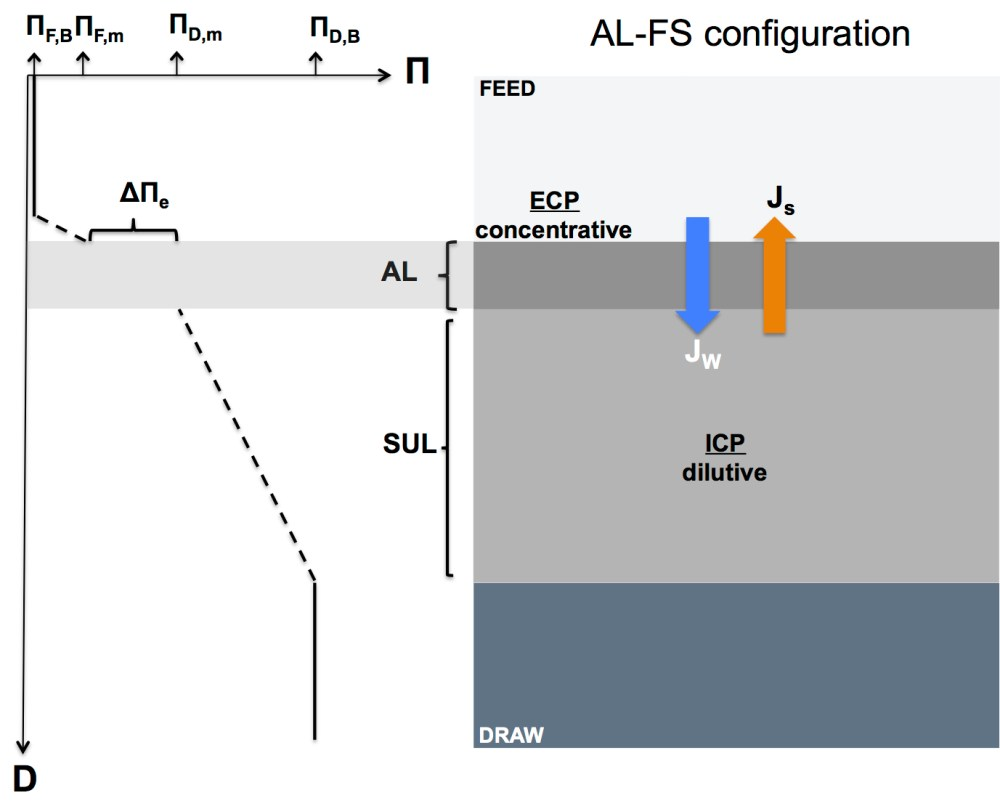 medium resolution of schematic diagram illustrating concentration polarization in a forward osmosis membrane