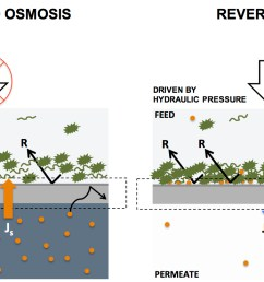 water filtration by forward and reverse osmosis explained in 4 paragraphs [ 1468 x 739 Pixel ]