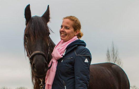 Paardencoaching: een methode die werkt!