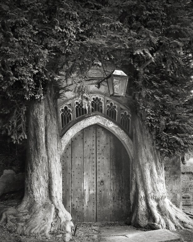 Portraits of Time, by Beth Moon