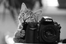Essa câmera parece bem apetitosa.