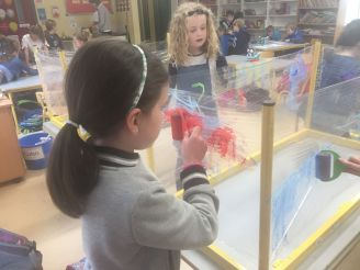 Making Aquarium SI 2018 - 04