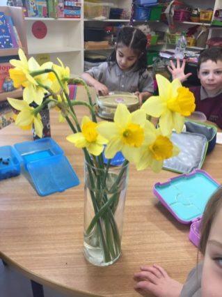 Spring flowers JI 2020