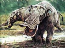 Prehistoric Mammals with Fossil Information Pictures and