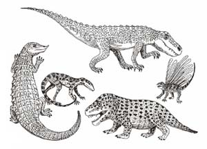 Important events in the mesozoic era. Mesozoic Era. 2019-01-24