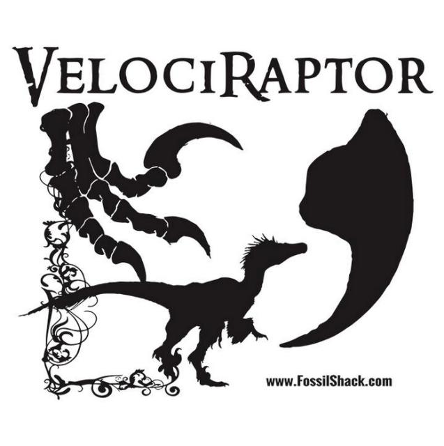 Youth Large velociraptor shirt