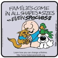 """Ziggy, with cat, dog, parrot, says """"Families Come in All Shapes & Sizes - Even Species!""""  Our reply:  """"So do Foster Families!"""""""
