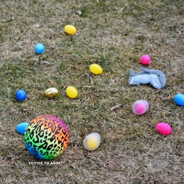 What to put in Easter eggs for kids or adults!