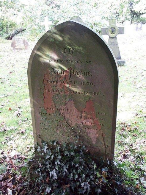 Grave 41