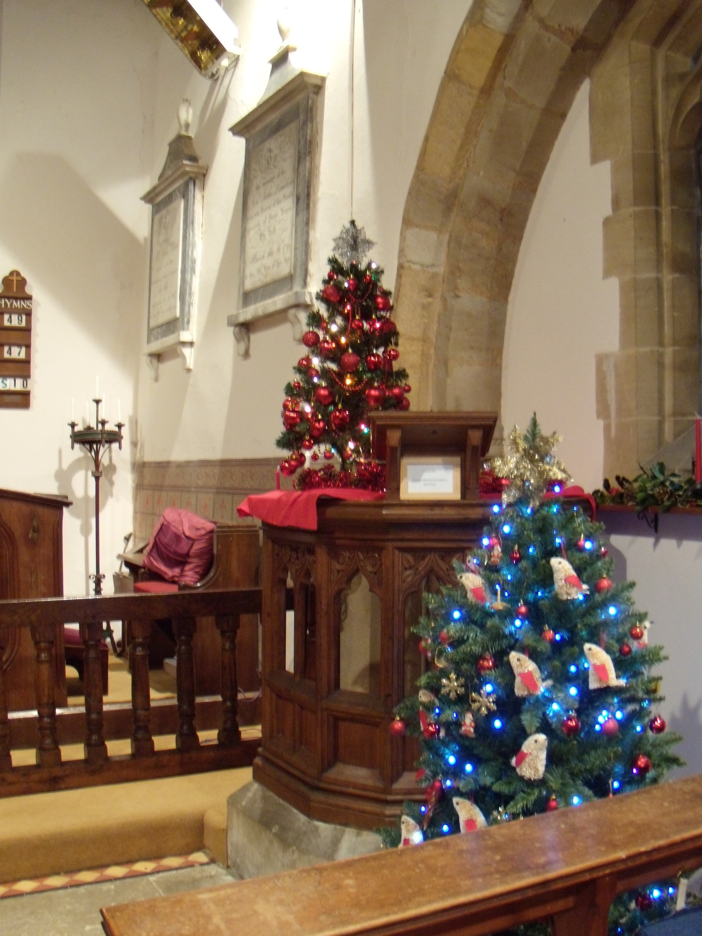 Christmas trees by pulpit