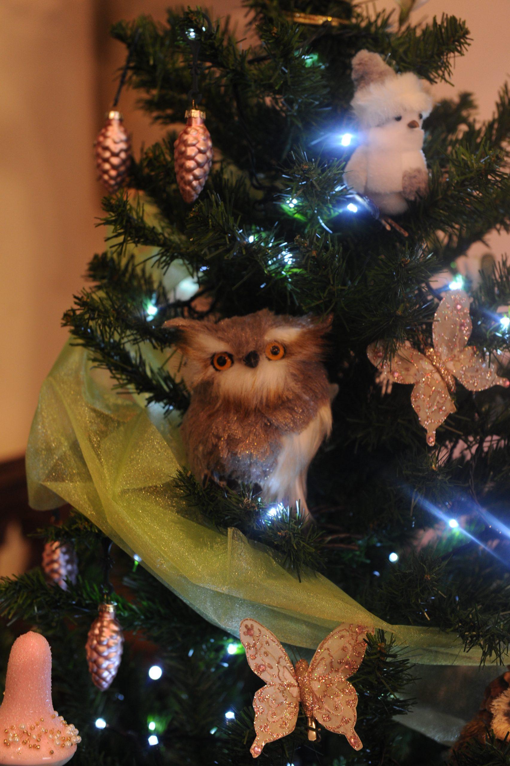 Christmas tree with owl