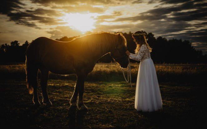 Konie-sesja-slubna-MR-038