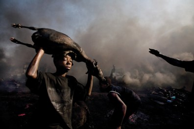 The carcasses of freshly killed goats are roasted by the flames of burning tires at Trans Amadi.