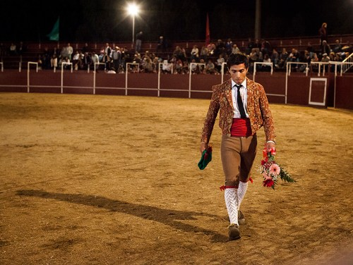 Salutes from the public: Dinis Caeiro a member of the Forcados of Évora group, leaves the arena after a successful 'pega' or face catch. When the pega is done at the first attempt and with style the forcados goes around the arena to receive applauses and flowers from the public, Entradas, Portugal.