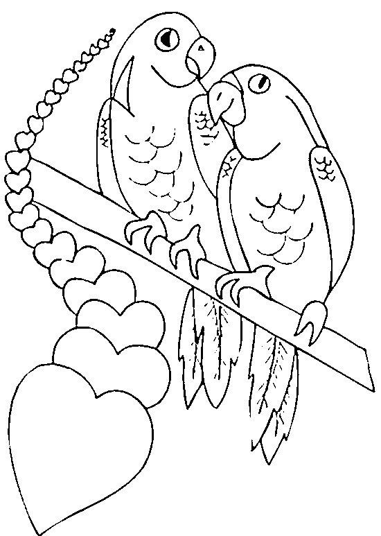 Disegno da colorare pappagalli innamorati