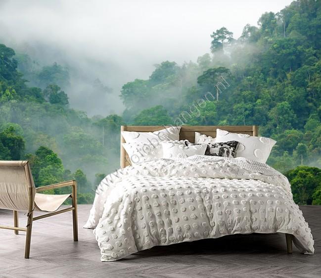 Vlies fotobehang Regenwoud in de mist  Fotobehangennl