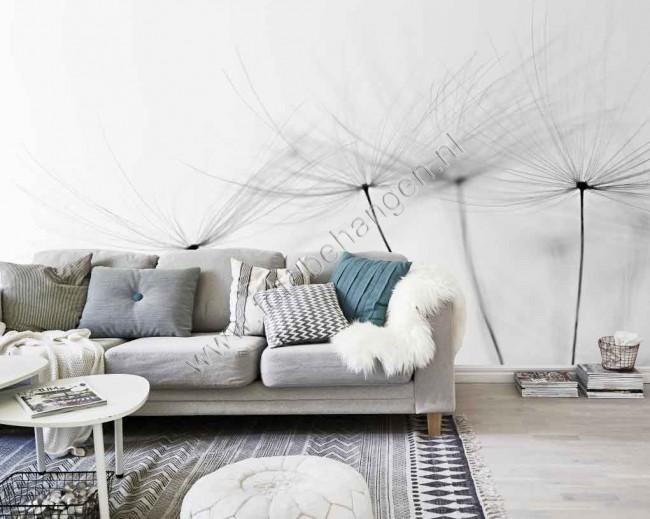 3d Effect Wallpaper For Living Room Vlies Fotobehang Paardenbloem In Zwart Wit Fotobehang