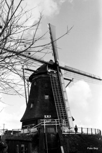 043-0309-vrouw-g