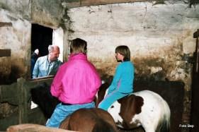 Jaap van der Laan wil pony's voor de kinderboerderij.
