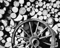 Kreise aus Holz - Fritz