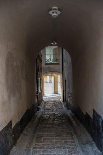 Stockholm Moni (13)-130