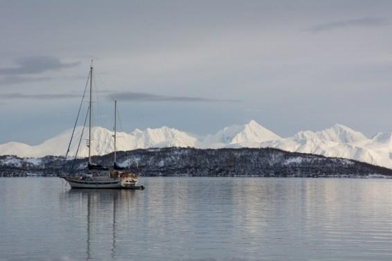 Portfolio-Moni-Norwegen