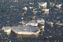 Winter - Eiseskälte im Ostpark - Karsten