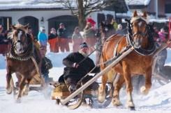 Winter-Schlittenrennen-Helmut