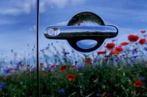 Karl Eissner - Flower Power