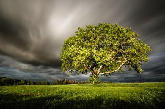 Summer Storm - von Torsten Christ