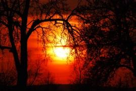 Volker Berg der Himmel brennt