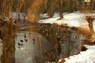 Karin - sneeuwenijs (600 x 400)