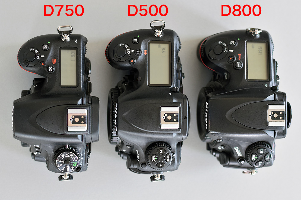 Nikon D500 im Vergleich mit Nikon D650 und Nikon D800