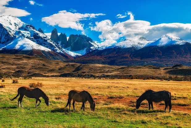 Fotoexplorer-Marcio-Cabral-ARG-e-CHI-Patagonia-051