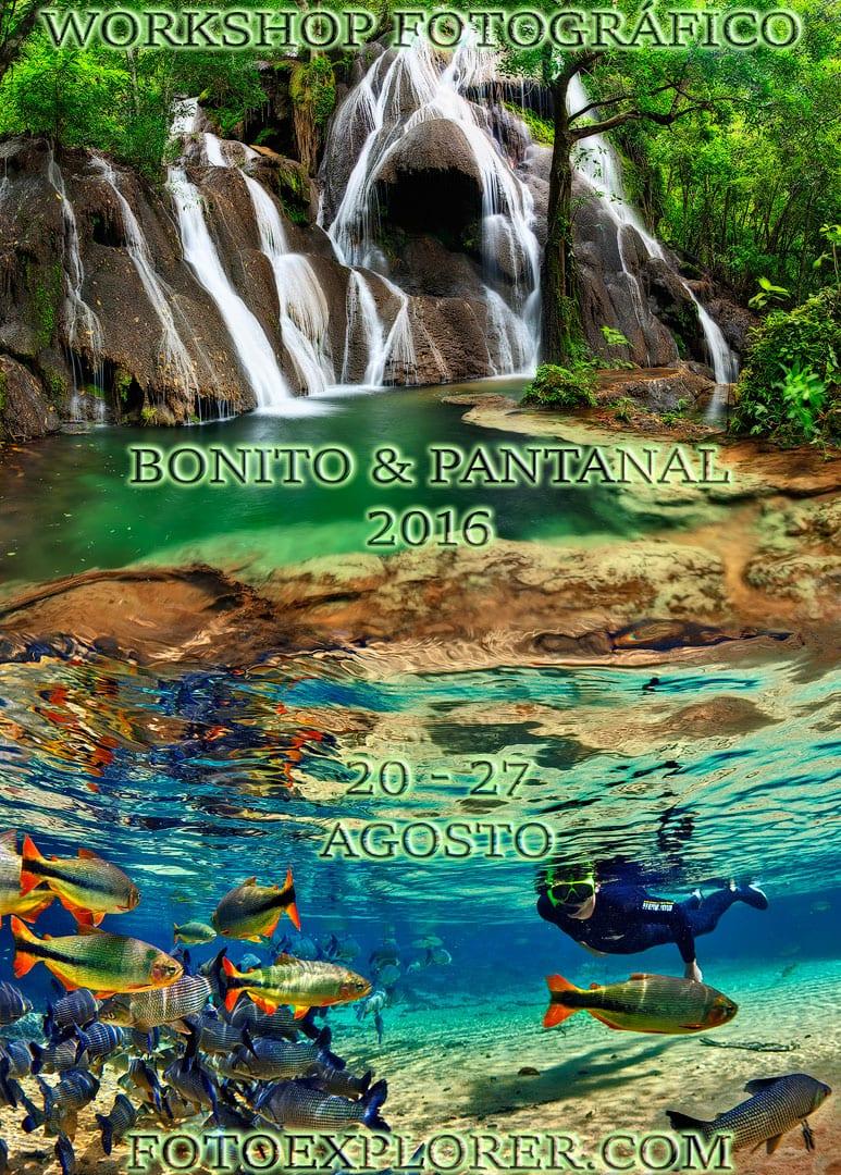 Fotoexplorer-Marcio-Cabral-Workshop-Bonito-Pantanal-001