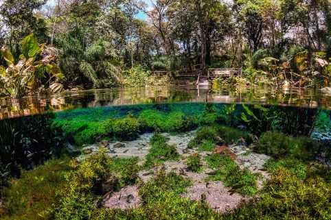 Fotoexplorer-Marcio-Cabral-BRA-MS-Bonito-Jardim-060