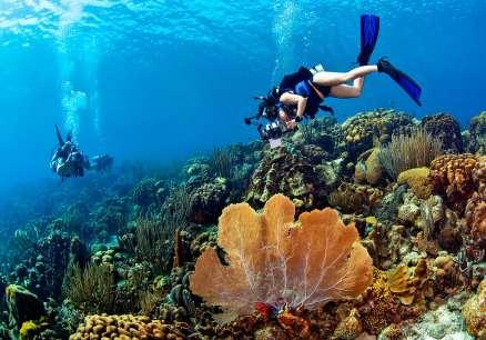 Fotoexplorer-Marcio-Cabral-HOL-Bonaire-004