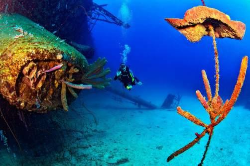 Fotoexplorer-Marcio-Cabral-HOL-Bonaire-010